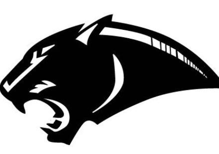 cool panther logos related keywords cool panther logos