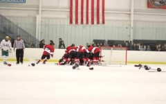 Hockey team wins fourth straight league title, looks to ride momentum into state playoffs