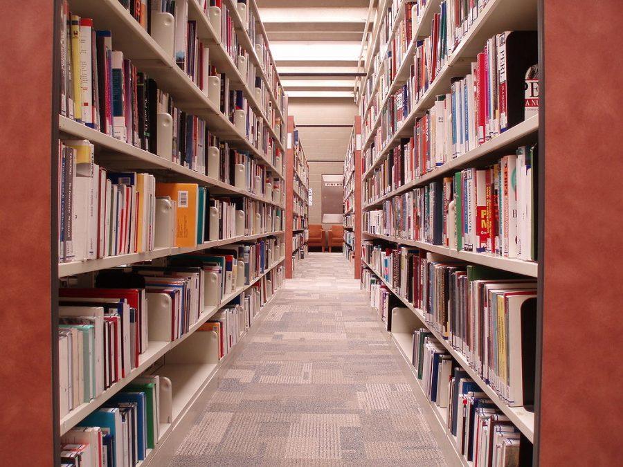 Teen librarian sets summer activities