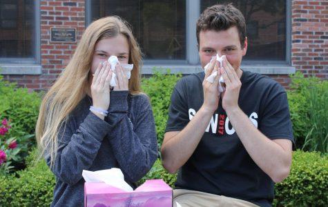 Best Sneeze