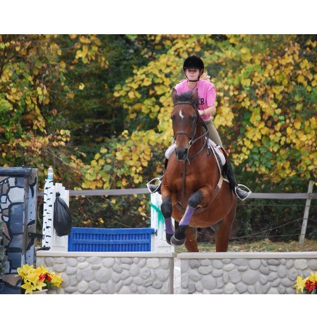 Olivia has won all of her competitions when riding  Sebastian.