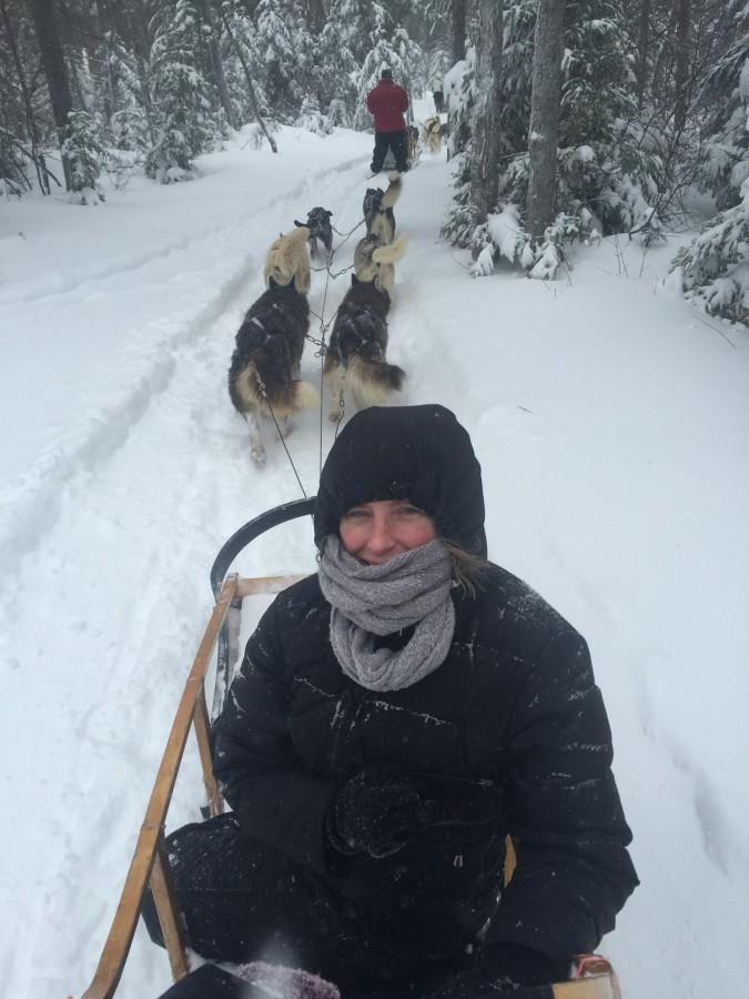 Dr.+Galvagni+on+a+dog+sled+at+the+2015+Quebec+Winter+Carnival.+