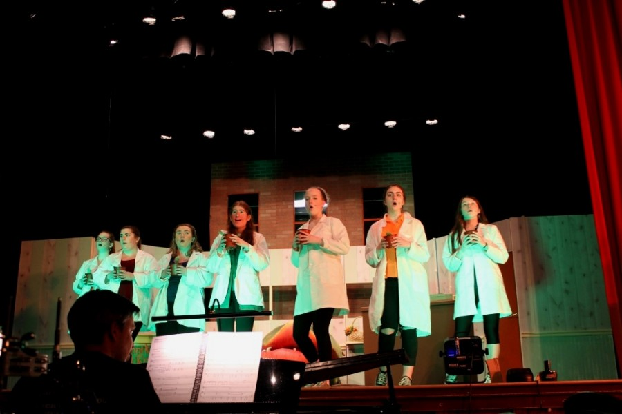 %22Doo+Wop+Girls%22+Catherine+Merkle%2C+sisters+Frankie+and+Bennie+Fontana%2C+Illana+Fishman%2C+Tricia+Whyte%2C+Tina+Rivara+and+Katie+Trahan+preparing+their+last+song+for+the+show.+