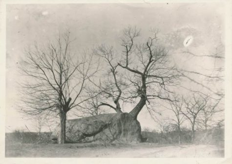 This is the oldest photo of the Rock dating back to circa 1890.