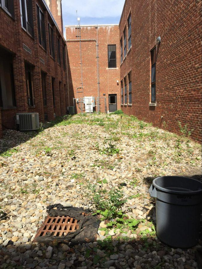Environmental+science+classes+to+transform+courtyard