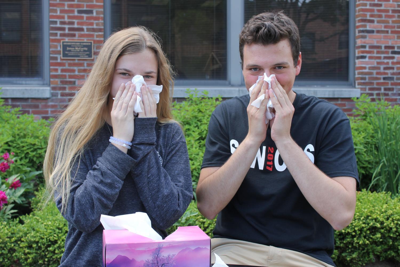 Best+Sneeze