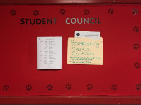 Student council puts on successful homecoming dance