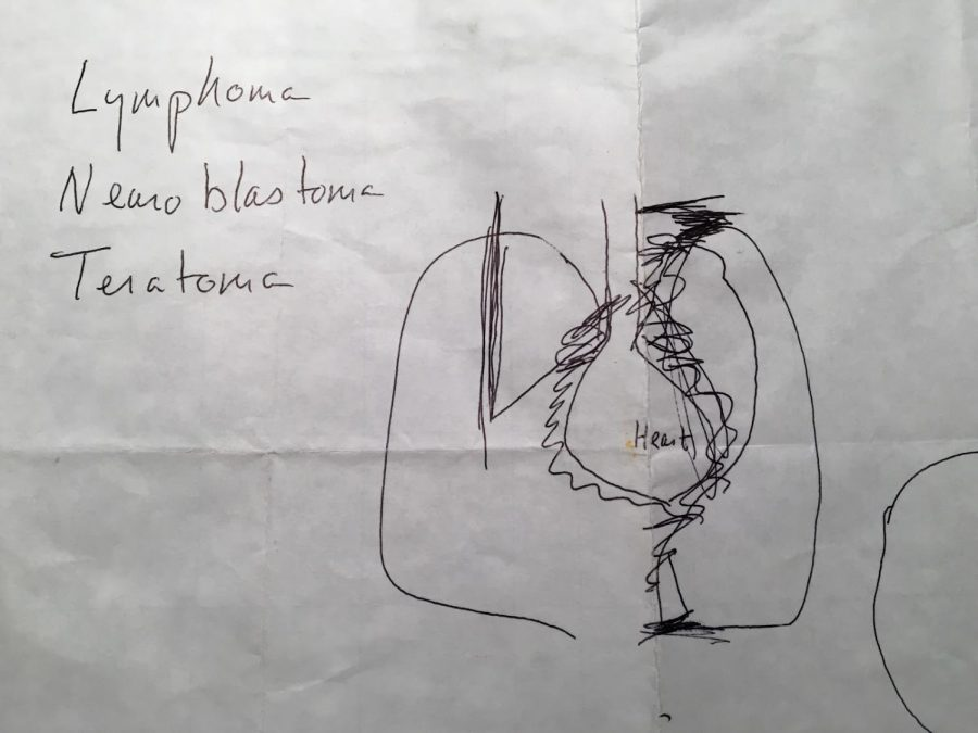 A drawing made by a doctor of the tumor.